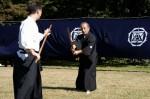 Naginatajutsu-2 (Image credit: htkatori.blog55.fc2.com)